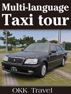 Multi-language Taxi tour