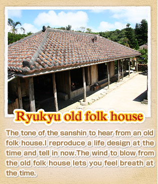 Old folk house cultural assets