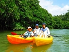 Mangrove Kayak 2½ hours course