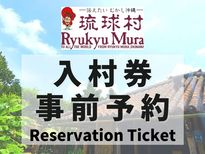Ryukyumura Entrance Ticket